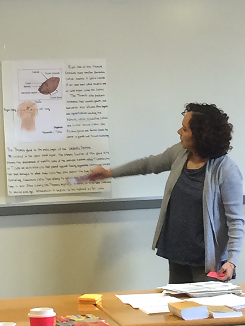 Adriana Ochoa presenting a review of medical terms related to the urinary system's anatomy, physiology, and medical procedures to classmates